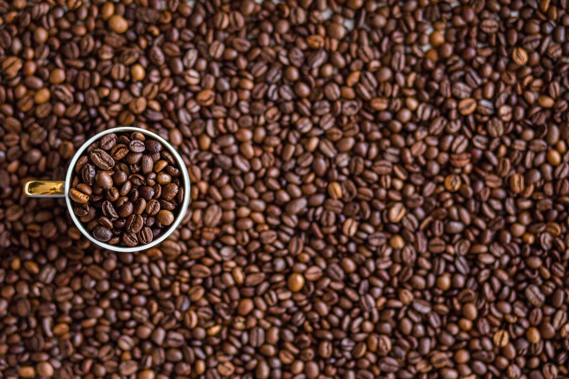 Top 15 Coffee Making Items To Make Your Brew Special